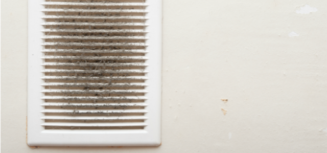6 Tips To Keep Your Home's Air Ducts Pest-Free