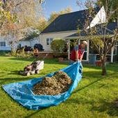 Spring Yard Clean-Ups & Pest Proofing