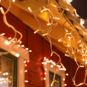 Are Christmas Lights Attracting Pests to Your Home?