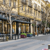 Why Pest Control is Essential for Plaza Businesses