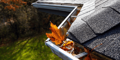 Easy DIY Methods to Help Keep Autumn Pests Out